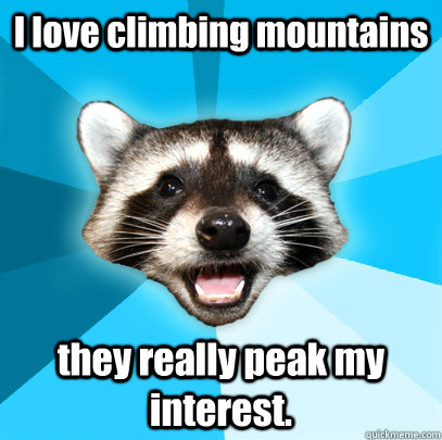 I love climbing mountains they really peak my interest. - I love climbing mountains they really peak my interest.  Lame Pun Coon