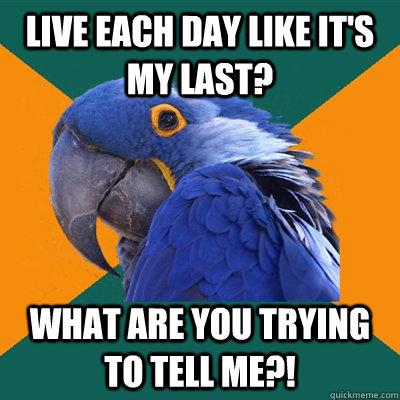 Live each day like it's my last? what are you trying to tell me?! - Live each day like it's my last? what are you trying to tell me?!  Paranoid Parrot
