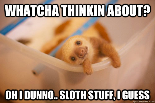 Whatcha thinkin about? Oh I dunno.. sloth stuff, I guess - Whatcha thinkin about? Oh I dunno.. sloth stuff, I guess  Sloth thoughts