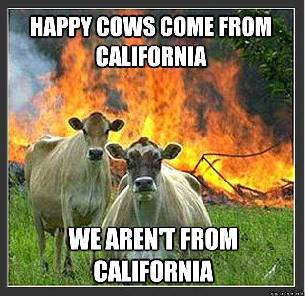 Happy cows come from California We aren't from california - Happy cows come from California We aren't from california  Evil cows