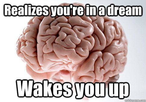 Realizes you're in a dream Wakes you up  - Realizes you're in a dream Wakes you up   Scumbag Brain