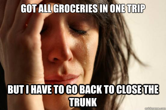 Got all groceries in one trip but i have to go back to close the trunk - Got all groceries in one trip but i have to go back to close the trunk  First World Problems