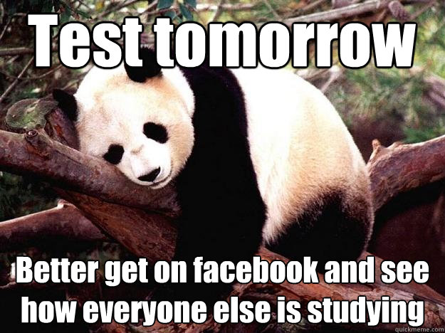 Test tomorrow Better get on facebook and see how everyone else is studying  Procrastination Panda