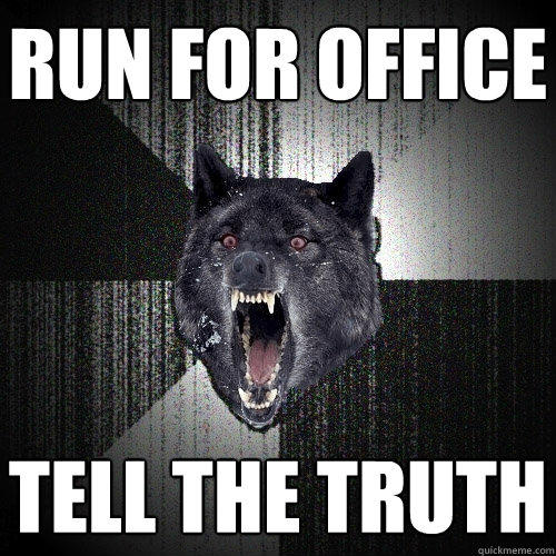 RUN FOR OFFICE Tell the truth - RUN FOR OFFICE Tell the truth  Insanity Wolf