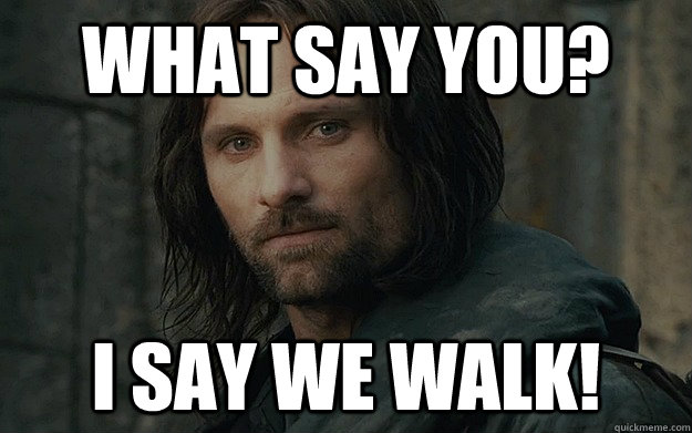 What say you? I say WE WALK! - What say you? I say WE WALK!  Walk For Life Aragorn