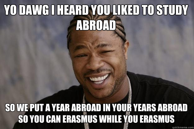 Yo dawg i heard you liked to study abroad so we put a year abroad in your years abroad so you can erasmus while you erasmus - Yo dawg i heard you liked to study abroad so we put a year abroad in your years abroad so you can erasmus while you erasmus  Xzibit meme