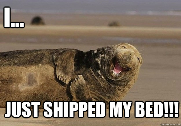 I... Just shipped my bed!!! - I... Just shipped my bed!!!  Sea Lion Brian
