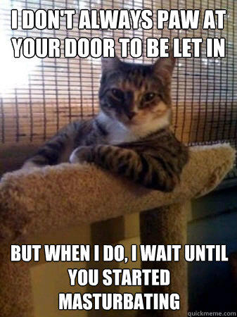 i don't always paw at your door to be let in but when I do, i wait until you started masturbating