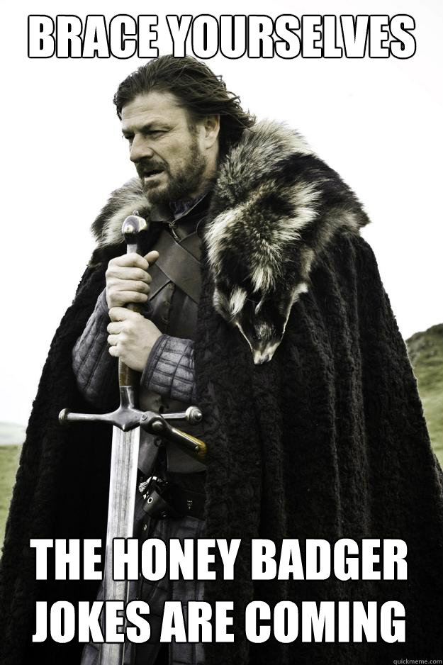 brace yourselves the honey badger jokes are coming - brace yourselves the honey badger jokes are coming  Winter is coming