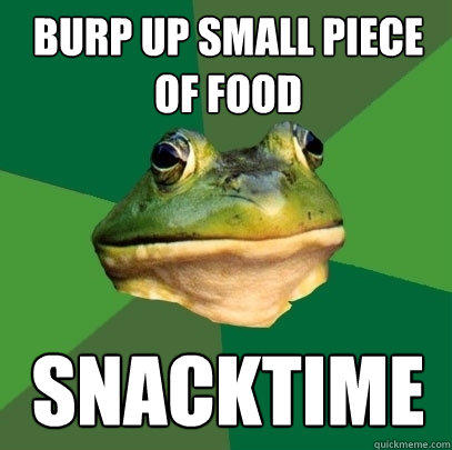 burp up small piece of food snacktime - burp up small piece of food snacktime  Foul Bachelor Frog
