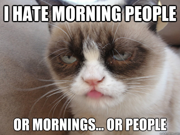 I HATE MORNING PEOPLE OR MORNINGS... OR PEOPLE  i HATE MORNING PEOPLE