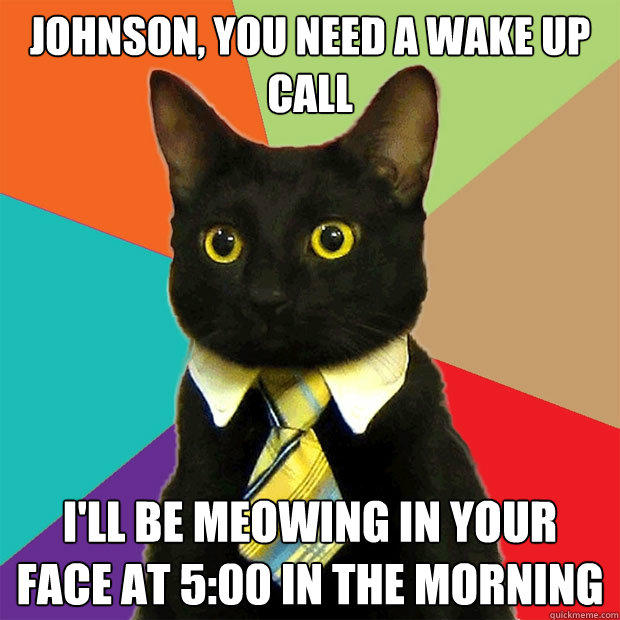 Johnson, you need a wake up call I'll be meowing in your face at 5:00 in the morning - Johnson, you need a wake up call I'll be meowing in your face at 5:00 in the morning  Business Cat