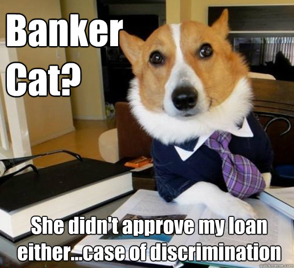 Banker Cat? She didn't approve my loan either...case of discrimination - Banker Cat? She didn't approve my loan either...case of discrimination  Lawyer Dog