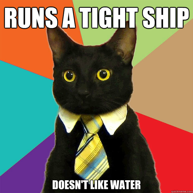 Runs a tight Ship Doesn't like water  Business Cat