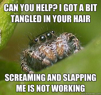 can you help? i got a bit tangled in your hair screaming and slapping me is not working - can you help? i got a bit tangled in your hair screaming and slapping me is not working  Misunderstood Spider