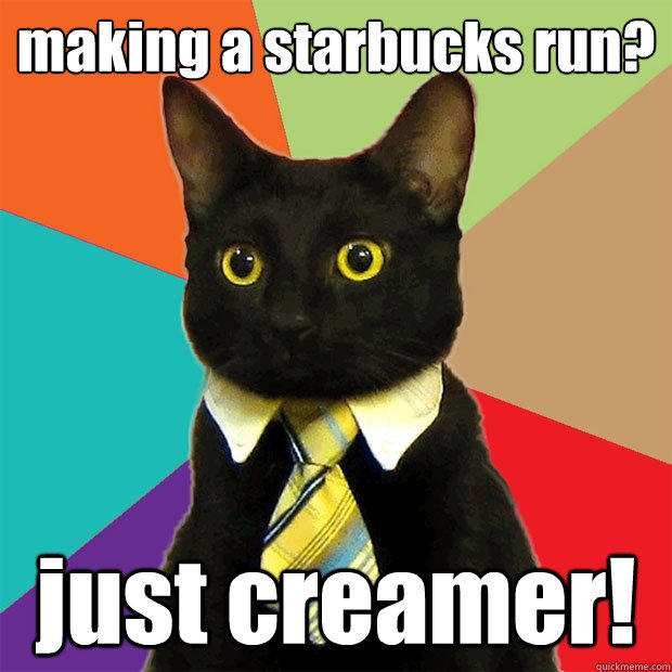 making a starbucks run? just creamer! - making a starbucks run? just creamer!  Business Cat