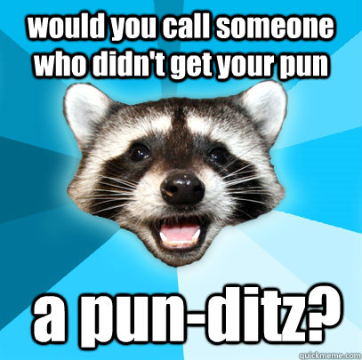 would you call someone who didn't get your pun  a pun-ditz? - would you call someone who didn't get your pun  a pun-ditz?  Lame Pun Coon