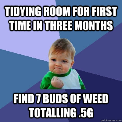 Tidying room for first time in three months Find 7 buds of weed totalling .5g - Tidying room for first time in three months Find 7 buds of weed totalling .5g  Success Kid