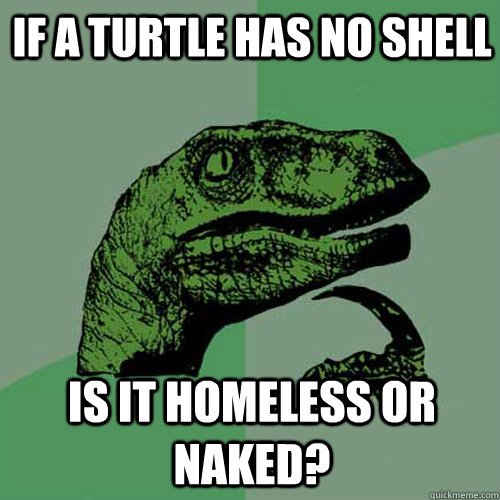 if a turtle has no shell is it homeless or naked? - if a turtle has no shell is it homeless or naked?  Philosoraptor