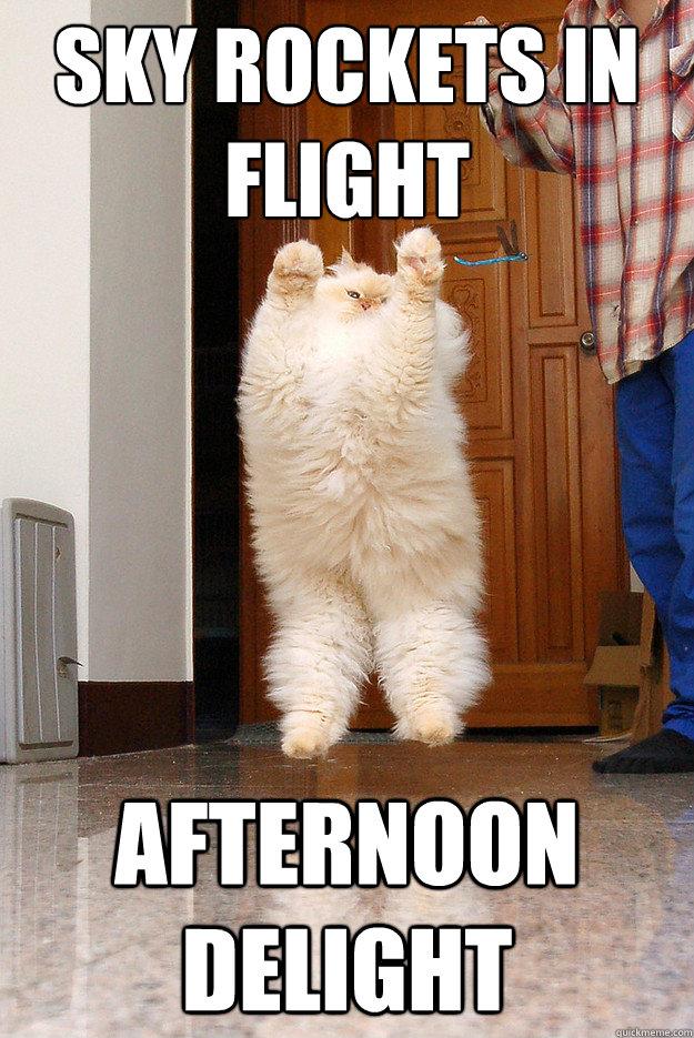 Sky Rockets in Flight Afternoon Delight - Sky Rockets in Flight Afternoon Delight  Afternoon Delight