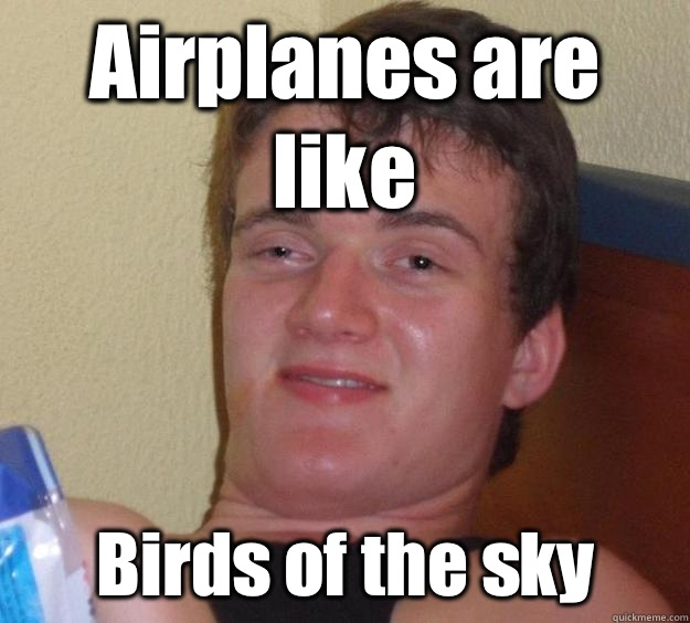 Airplanes are like Birds of the sky - Airplanes are like Birds of the sky  10 Guy