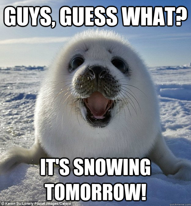 Guys, guess what? it's snowing tomorrow!
