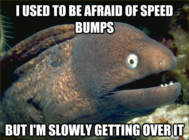 I used to be afraid of speed bumps But I'm slowly getting over it - I used to be afraid of speed bumps But I'm slowly getting over it  Bad Joke Eel