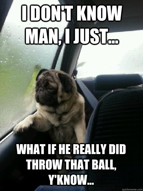 I don't know man, i just... What if he really did throw that ball, y'know... - I don't know man, i just... What if he really did throw that ball, y'know...  introspective pug on cesar millan