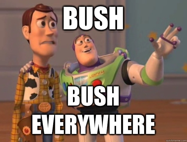 Bush Bush everywhere - Bush Bush everywhere  Buzz Lightyear