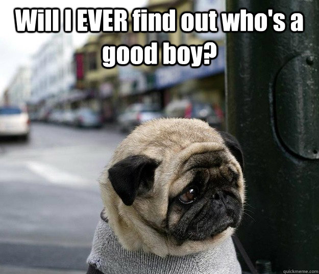 Will I EVER find out who's a good boy?  - Will I EVER find out who's a good boy?   Misc