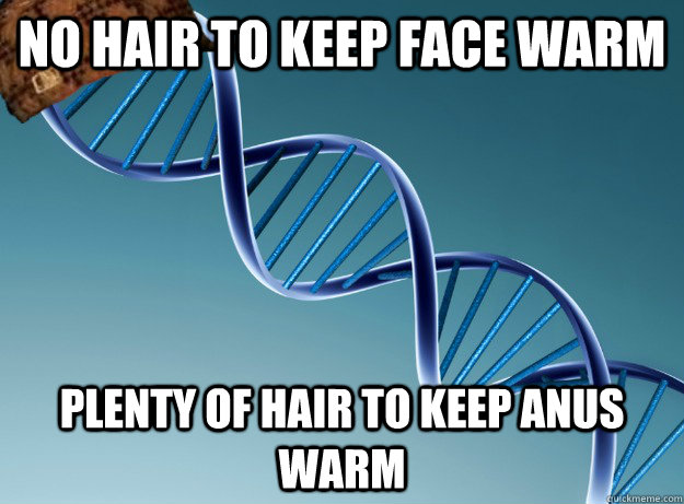 No hair to keep face warm Plenty of hair to keep anus warm - No hair to keep face warm Plenty of hair to keep anus warm  Scumbag Genetics