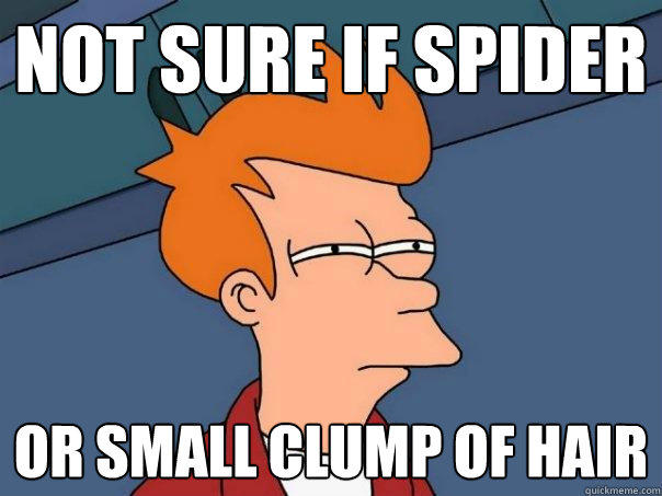 not sure if spider or small clump of hair - not sure if spider or small clump of hair  Futurama Fry