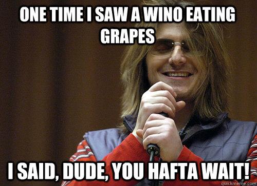 One time I saw a wino eating grapes I said, dude, you hafta wait!  Mitch Hedberg Meme