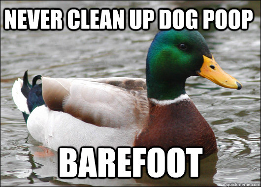 Never clean up dog poop Barefoot - Never clean up dog poop Barefoot  Actual Advice Mallard