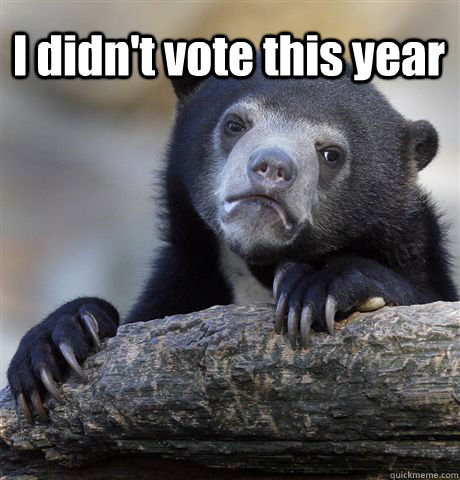 I didn't vote this year  - I didn't vote this year   Confession Bear