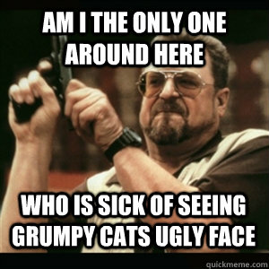 Am i the only one around here Who is sick of seeing grumpy cats ugly face - Am i the only one around here Who is sick of seeing grumpy cats ugly face  Misc