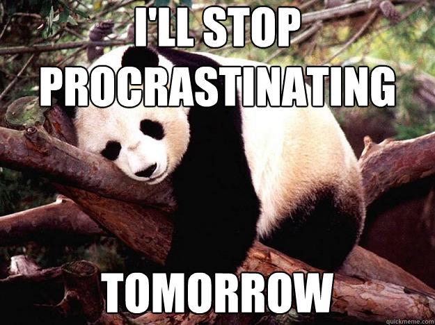 i'll stop procrastinating tomorrow - i'll stop procrastinating tomorrow  Procrastination Panda