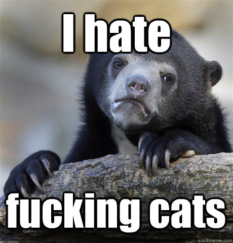 I hate fucking cats - I hate fucking cats  Confession Bear