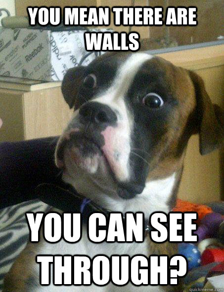 you mean there are walls you can see through? - you mean there are walls you can see through?  Baffled boxer