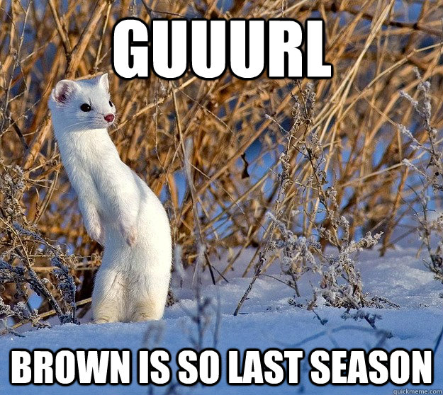 Guuurl Brown is so last season - Guuurl Brown is so last season  Misc