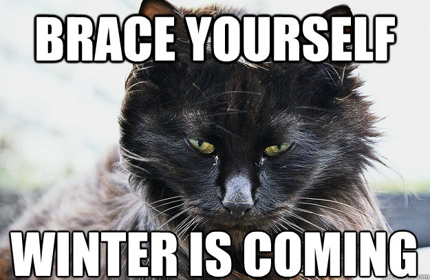 Brace yourself Winter is coming  - Brace yourself Winter is coming   Misc