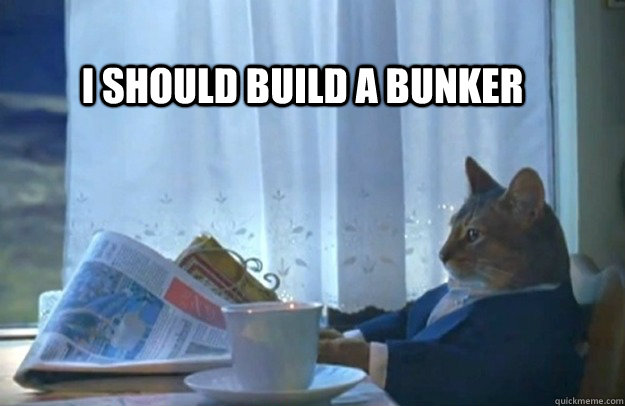 I should build a bunker - I should build a bunker  Sophisticated Cat