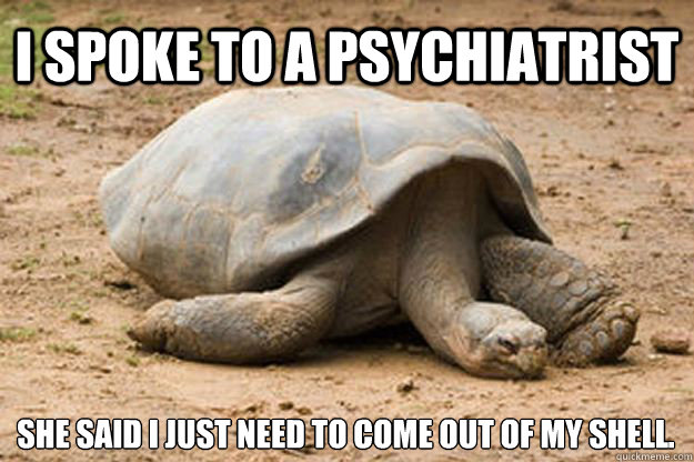 i spoke to a psychiatrist she said I just need to come out of my shell.  Depression Turtle
