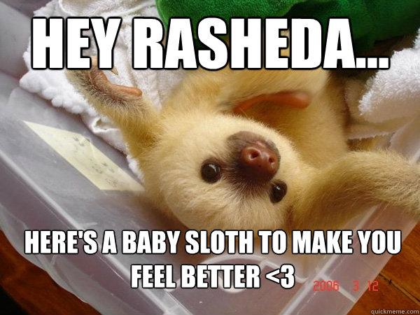 Hey Rasheda... Here's a baby sloth to make you feel better <3