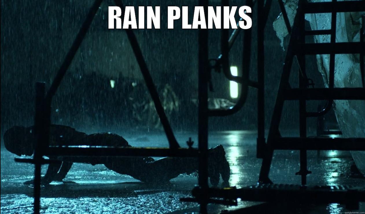 RAIN PLANKS  Misc