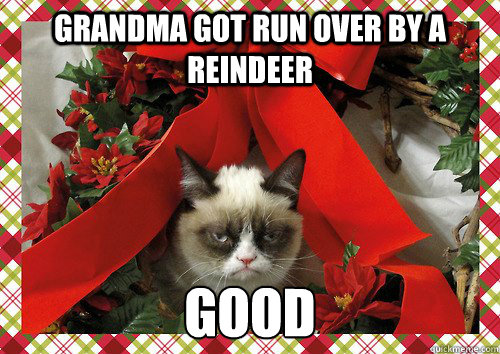 grandma got run over by a reindeer good  A Grumpy Cat Christmas
