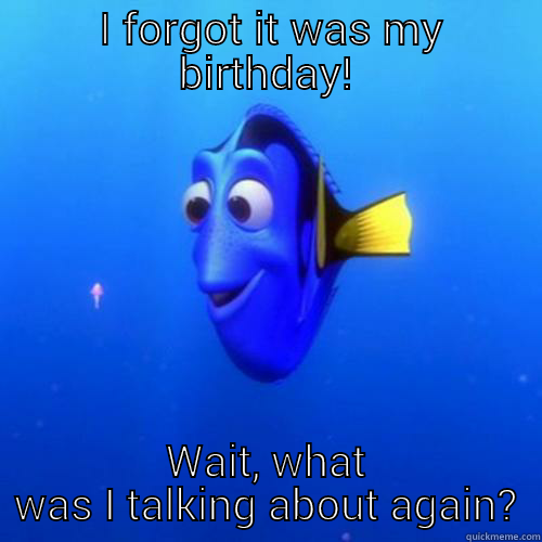 I FORGOT IT WAS MY BIRTHDAY! WAIT, WHAT WAS I TALKING ABOUT AGAIN? dory