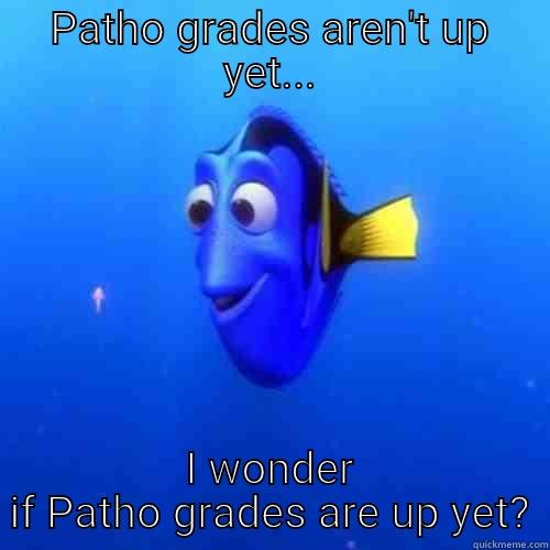 PATHO GRADES AREN'T UP YET... I WONDER IF PATHO GRADES ARE UP YET? dory