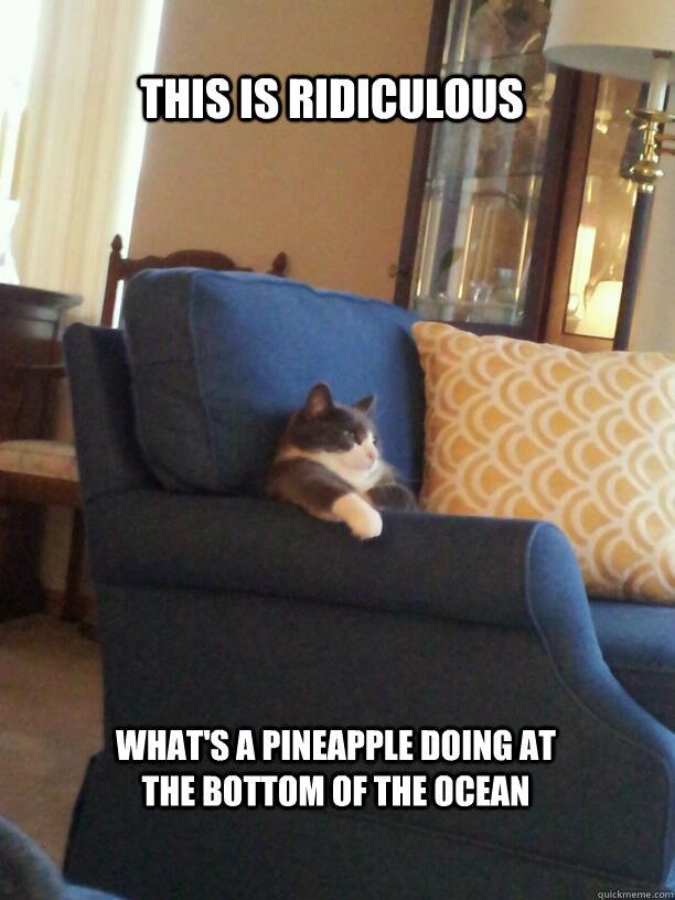 Tv Watching Cat Memes Quickmeme