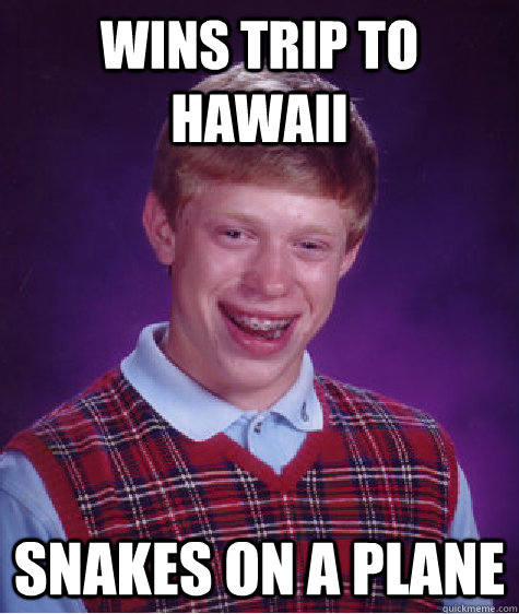 Wins Trip to Hawaii Snakes on a Plane - Wins Trip to Hawaii Snakes on a Plane  Bad Luck Brian